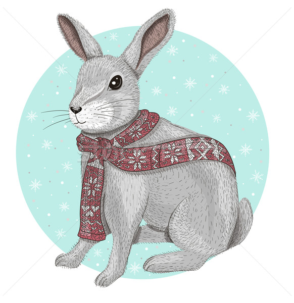 Cute rabbit with scarf winter background Stock photo © lapesnape