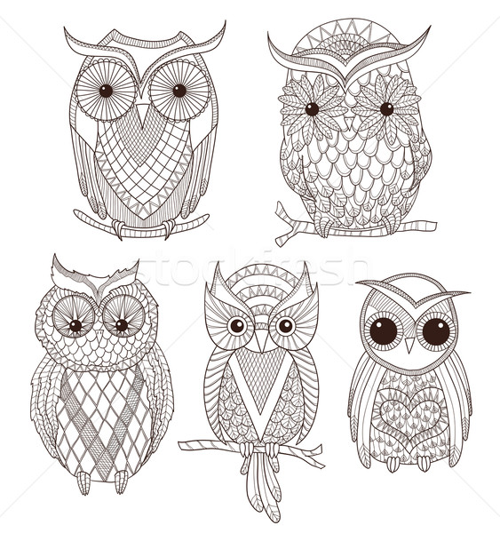 Set of cute owls. Stock photo © lapesnape