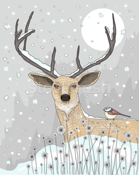 Cute reindeer and bird christmas night background.  Stock photo © lapesnape