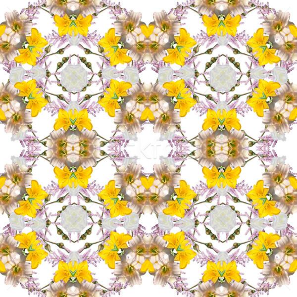 Abstrato floral caleidoscópio rosa natureza Foto stock © lapesnape