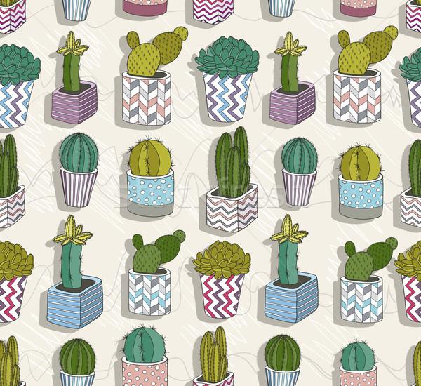 Cute cactus fleur résumé nature Photo stock © lapesnape