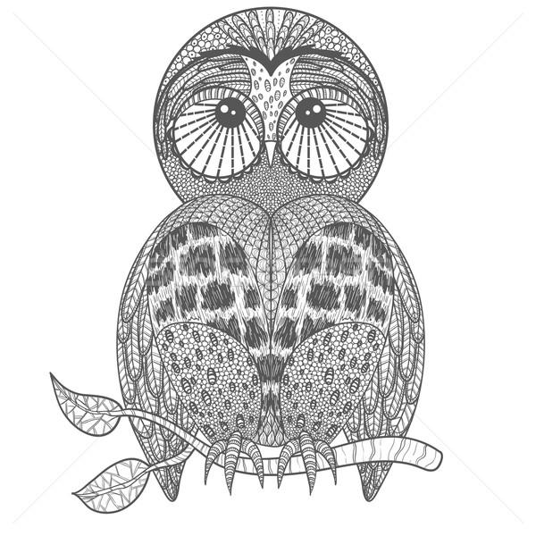 Cute owl on tree branch Stock photo © lapesnape