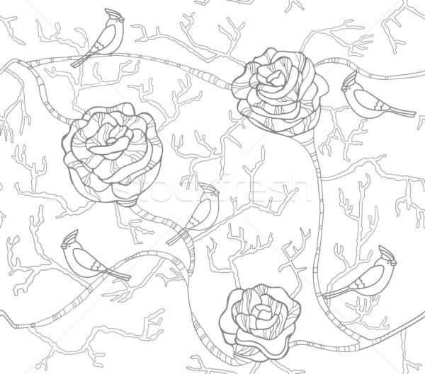 Abstract bianco nero senza soluzione di continuità modello di fiore rose uccelli Foto d'archivio © lapesnape