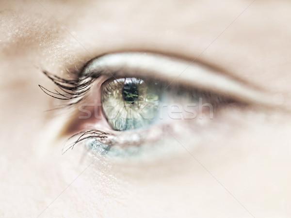 眼 マクロ 美しい 白人 少女 女性 ストックフォト © ldambies