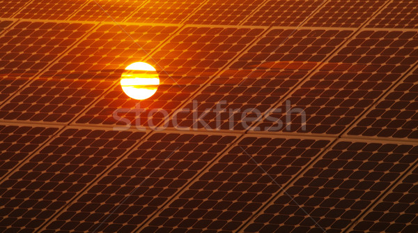 Photovoltaic energy Stock photo © ldambies