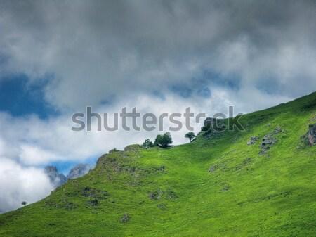 Belle montagne paysage ciel arbre bleu Photo stock © ldambies