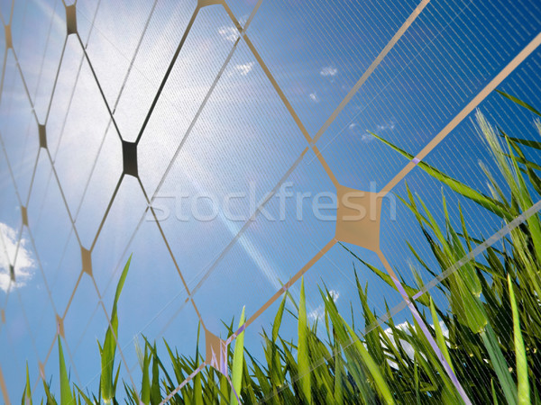 Solar energy concept Stock photo © ldambies