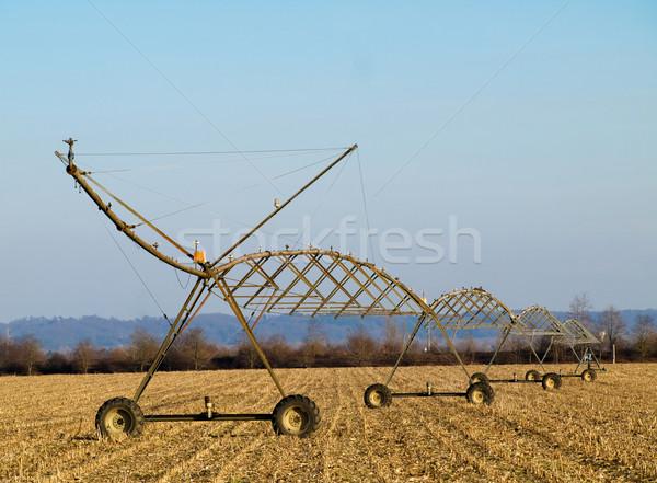 Agua riego maíz campo azul agricultura Foto stock © ldambies