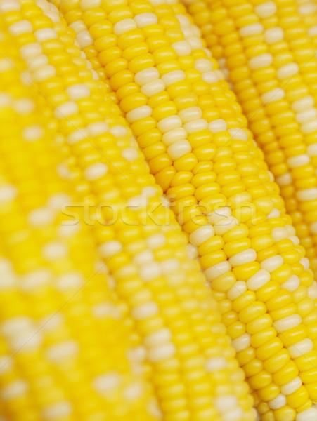 Maïs fond jaune blanche Malaisie Photo stock © ldambies