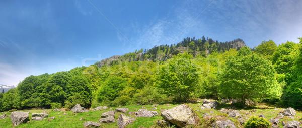 Mountain panoramic landscape Stock photo © ldambies
