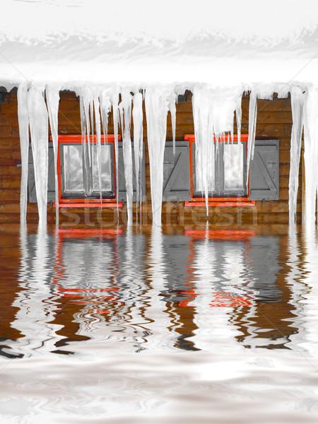 Freezing winter Stock photo © ldambies