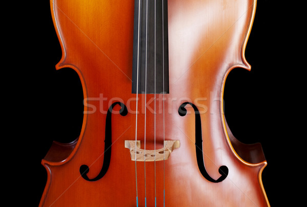 Cello closeup Stock photo © ldambies