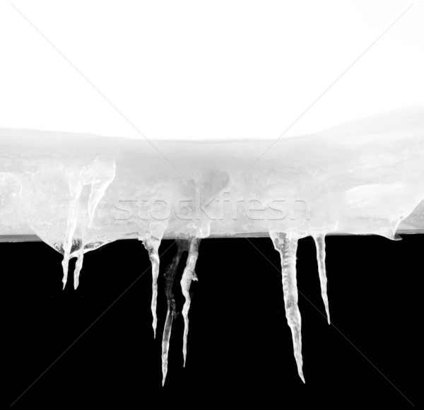 Macro of ice stalactites Stock photo © ldambies