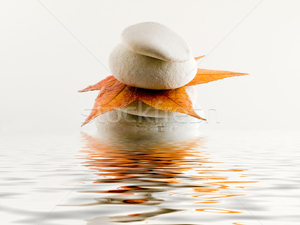 Beach stones with leaf and water reflection Stock photo © ldambies