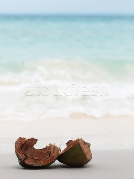 кокосового снарядов открытых берега пляж Сток-фото © ldambies