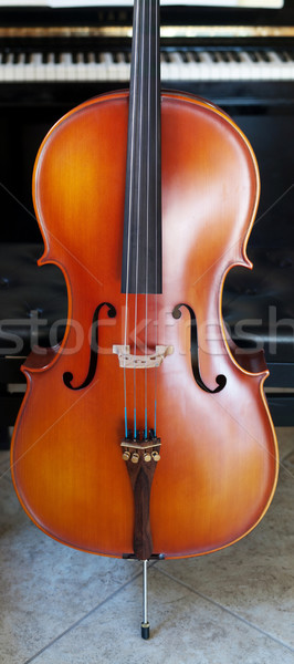 Cello panoramic view Stock photo © ldambies