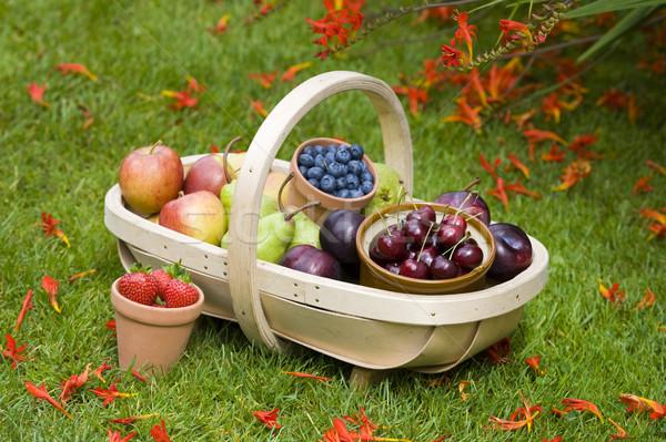 Fruits d'été bleuets cerises pommes poires fraises Photo stock © leeavison