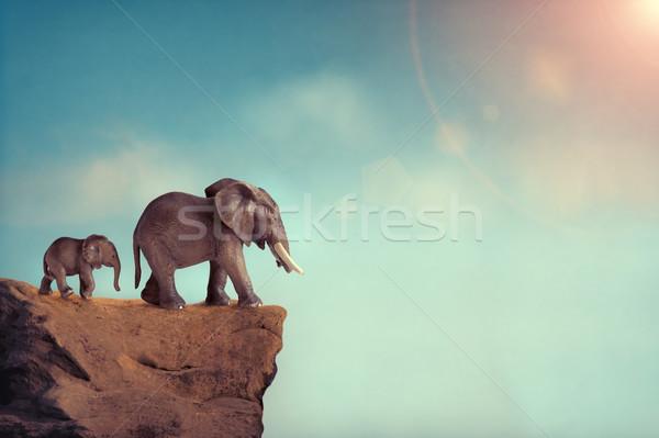 extinction concept elephant family on edge of cliff Stock photo © leeavison