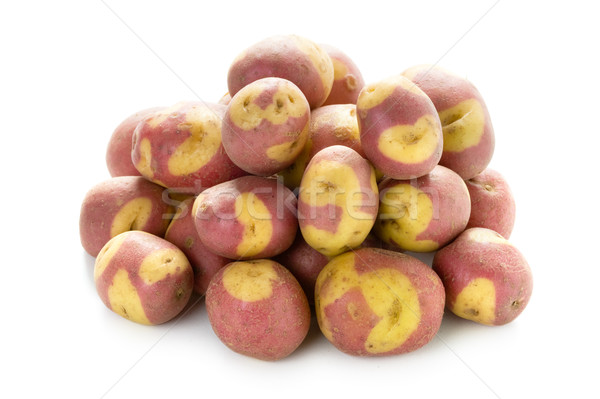 apache potatoes Stock photo © leeavison