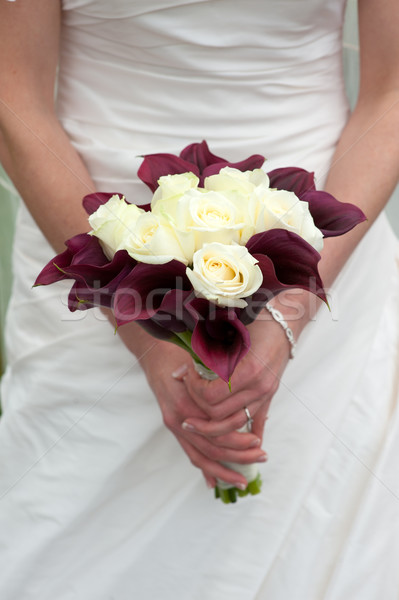 невеста Purple белый Сток-фото © leeavison