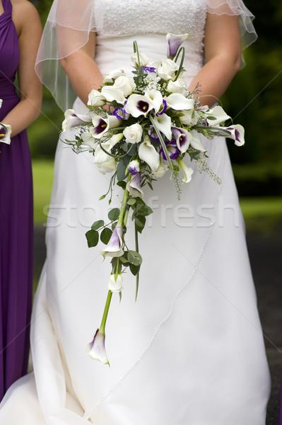 Noiva buquê de casamento roxo branco rosas Foto stock © leeavison