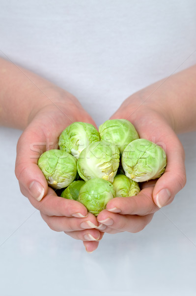 hands hold brussel sprouts Stock photo © leeavison