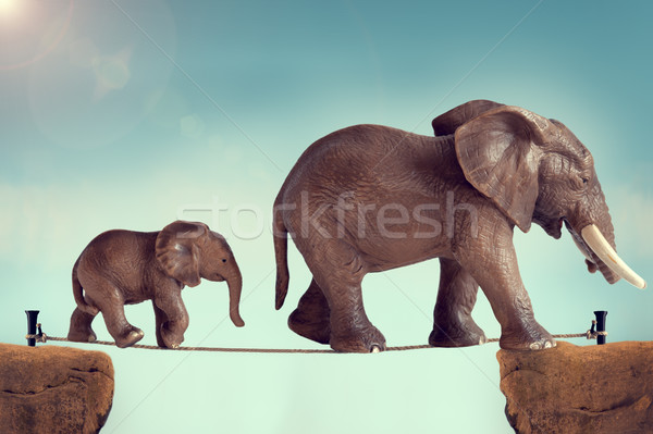 mother and baby elephant on a tightrope  Stock photo © leeavison