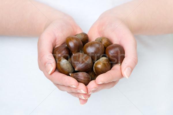 sweet chestnuts Stock photo © leeavison