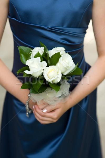 Mulher branco rosas azul vestir Foto stock © leeavison