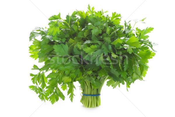 bunch of flat leaved parsley isolated on a white background Stock photo © leeavison