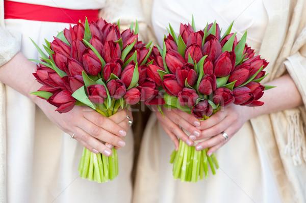 Foto stock: Rojo · tulipán · boda · mujer · flores