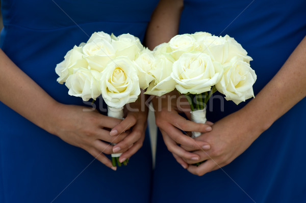 two bridesmaids holding white rose wedding bouquets Stock photo © leeavison