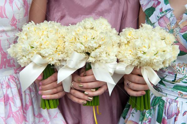 Három nárcisz esküvő klasszikus ruhák virágok Stock fotó © leeavison