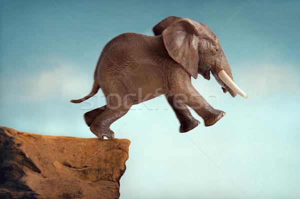 Springen geloof olifant springen lopen springen Stockfoto © leeavison