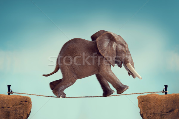 elephant running across a tightrope Stock photo © leeavison
