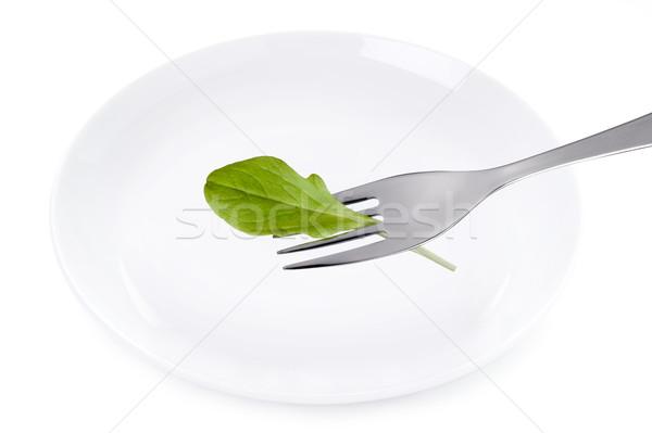 Saláta levél tányér izolált fehér villa Stock fotó © leeavison