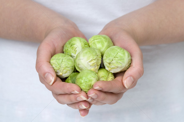 Kezek tart kéz zöld női zöldség Stock fotó © leeavison