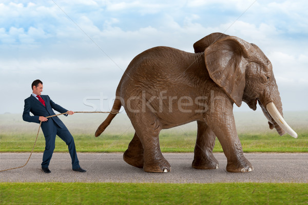 businessman trying to restrain an elephant Stock photo © leeavison