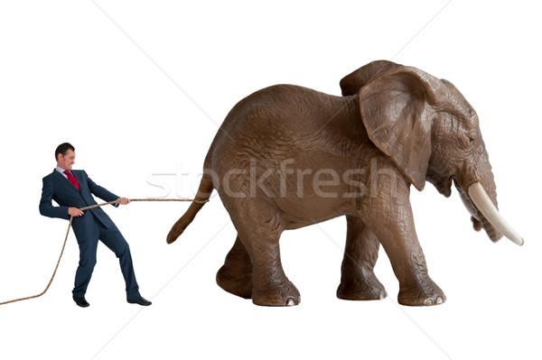 businessman trying to restrain an elephant Stock photo © leeavison