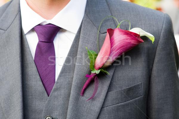 Bruidegom lelie knoopsgat paars bloem Stockfoto © leeavison
