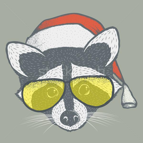 Raccoon vector illustration Stock photo © leedsn