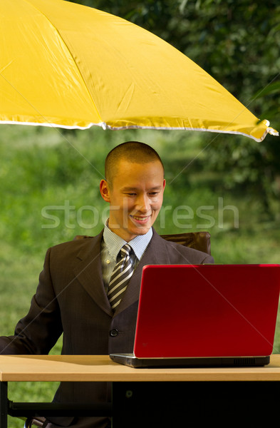 Stockfoto: Zakenman · paraplu · verbergen · internet · laptop · tuin