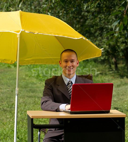 Empresário guarda-chuva ocultação internet laptop jardim Foto stock © leedsn