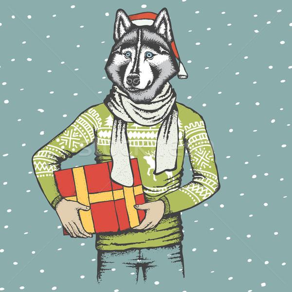 Foto stock: Husky · Navidad · vector · perro · humanos · sudadera