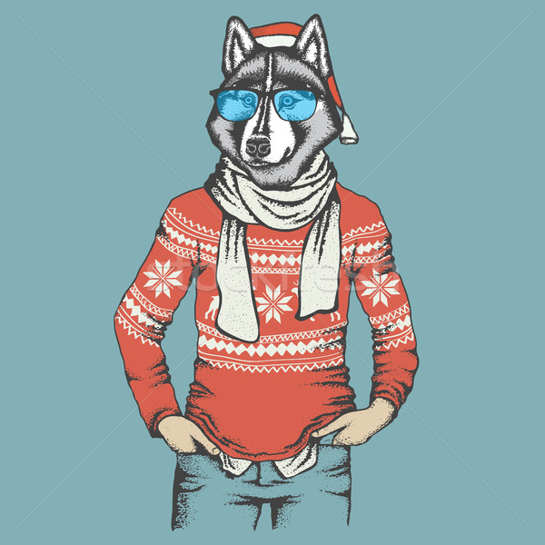 Husky Рождества вектора собака человека Сток-фото © leedsn