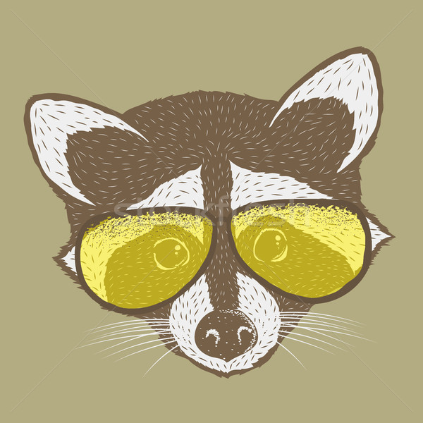 Wasbeer hoofd geïsoleerd aanbiddelijk zoogdier vector Stockfoto © leedsn
