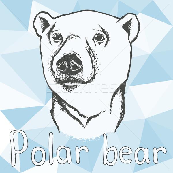 Urso polar ilustração abstrato natureza fundo cartão Foto stock © leedsn