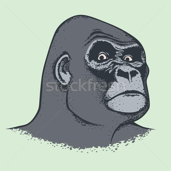 Vector Monkey Concept Stock photo © leedsn