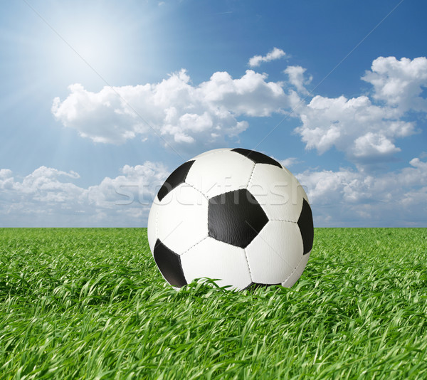 soccer ball in green grass and blue cloudly sky Stock photo © leedsn