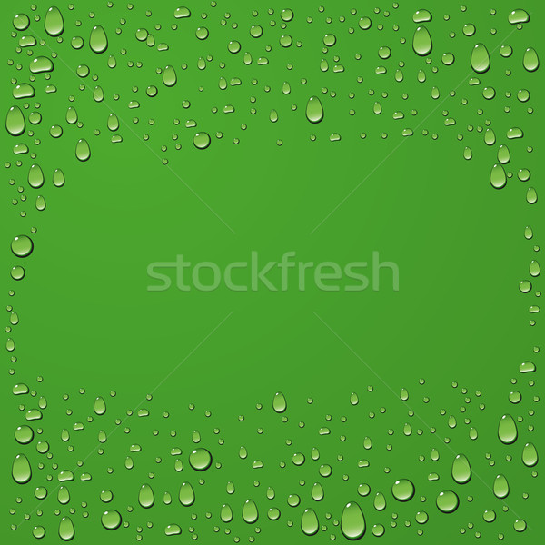 Water drop on green background Stock photo © leedsn